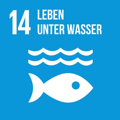 UN-Nachhaltigkeitsziel 14 Leben unter Wasser.