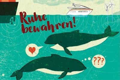 """Grafik """"Unterwasserlärm bedroht Schweinswale"""""""