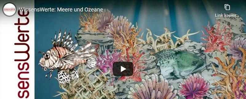 "Animierter Erklärfilm ""Meere und Ozeane""."