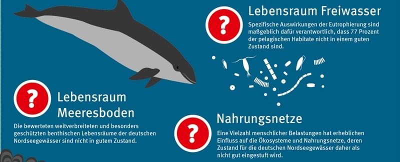 """Grafik """"Der Deutschen Nord- und Ostsee geht es schlecht"""""""
