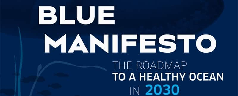 Blue Manifesto - The Roadmap to a Healthy Ocean in 2030