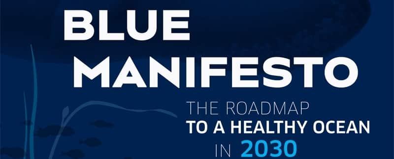 Das Blaue Manifest (PDF)