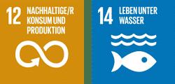 """UN-Nachhaltigkeitsziel 12 """"Verantwortungsvoll konsumieren und produzieren"""" und UN-Nachhaltigkeitsziel 14 """"Leben unter Wasser"""""""