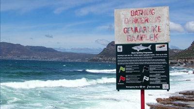 Hai Warnschild Strand von Muizenberg, Südafrika mit Hai Spotter Hinweis.