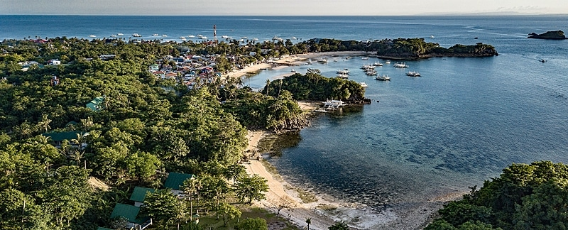 Auf der philippinischen Insel Malapascua erforschte Julian Engel Möglichkeiten zu nachhaltigem Haitourismus.