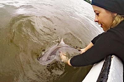 Kerstin Glaus entlässt einen Babyhai nach einer kurzen Untersuchtung in die Freiheit.