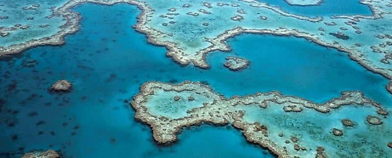 Luftaufnahme vom Great Barrier Reef.