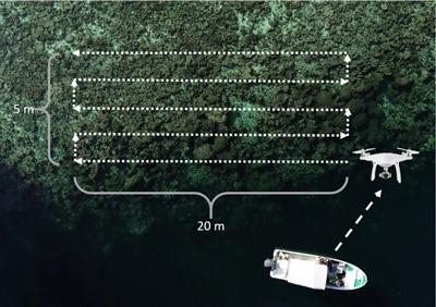Flugbahn der Drohne über einem Korallenriff in Palau. Von Pia Lewin