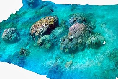 Kartierung von Flachwasserkorallenriffen in Palau mit Drohnen von Pia Lewin. Digitales Höhenmodell.