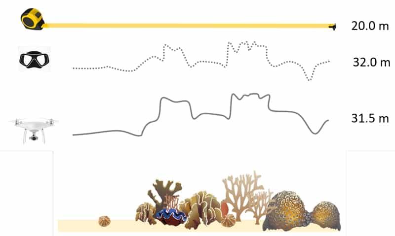 Konzept zur Überprüfung der Riffkontur. Von Pia Lewin