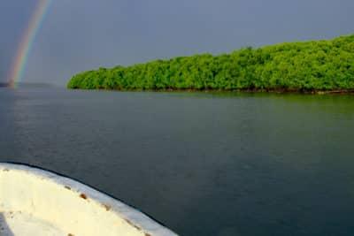 Auf dem Heimweg von der Feldarbeit, Fluss Rewa, Fidschi.