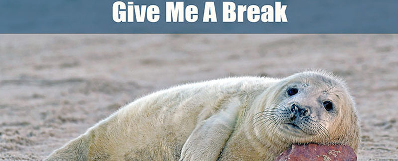Give me break - Lasst mir meine Pause!