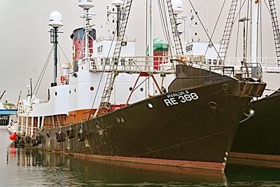 """Isändisches Walfangboot """"Hvalur 8"""""""