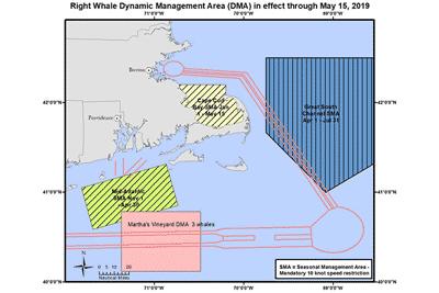 Grafik Right Whale Dynamic Management Area (DMA) von NOAA Fisheries.