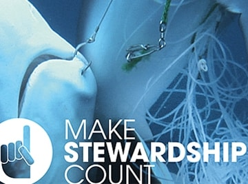 Make Stewardship Count-Koalition