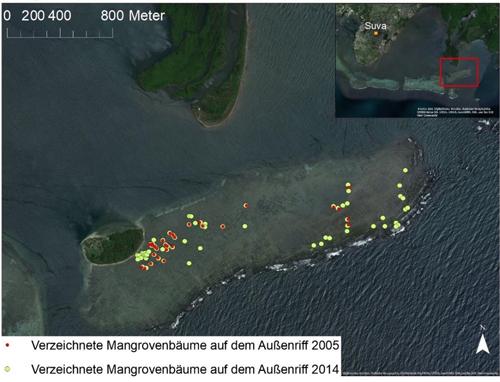 Übersicht des Forschungsgebietes und die Entwicklung der Mangrovenbaum-Abundanz über einen Zeitraum von 9 Jahren.