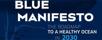 Das Blaue Manifest – Blue Manifesto