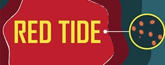 Red Tide - Rote Flut