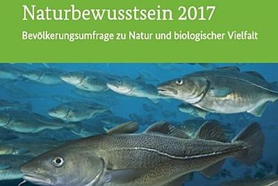 Deutsche wollen mehr Meeresschutz