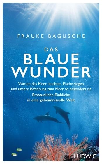 """Cover des Buchs """"Das Blaue Wunder"""" von Frauke Bagusche."""