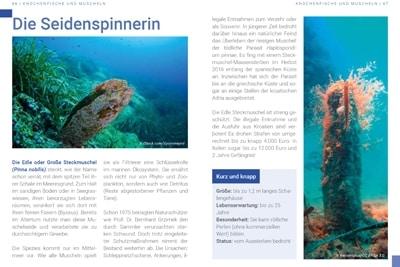 Seiten 66-67, Broschüre Bedrohte Artenvielfalt in der Adria.