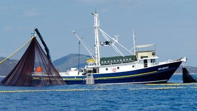 Fischkutter mit aufgespanntem Ringwadennetz.