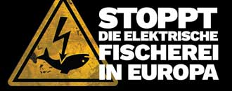 Elektrofischerei