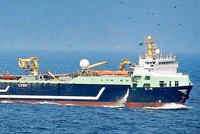 EU-Supertrawler plündern britische Gewässer – viele tote Delfine