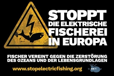 """Grafik """"Stoppt die elektrische Fischerei in Europa""""."""