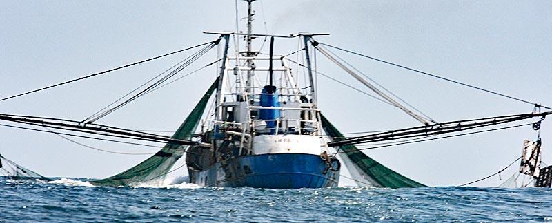 Illegaler Grundschleppnetzfischer auf der Flucht vor Fischereiaufsicht, Mayumba Bucht, Gabun.