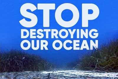 Bürgerpetition gegen Grundschleppnetzfischerei in EU-Meeresschutzgebieten