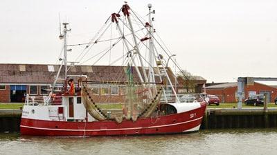 Grundschleppnetzfischer im Hafen von Büsum.