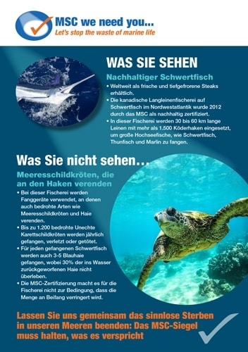 Info MSC-Zertifizierung Hoki/Schwertfisch und Beifangverluste von Meeresschildkröten.