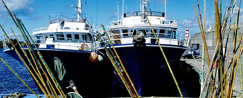 Nachhaltiger Fischfang mit Bambusangeln auf den Azoren.