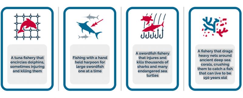 Spielen Sie unser kleines Spiel und finden Sie heraus welche Fischereien vom MSC (Marine Stewardship Council) als garantiert nachhaltig ausgezeichnet wurden.