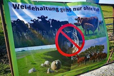 Anti Wolfsplakat im Nationalpark Wattenmeer.
