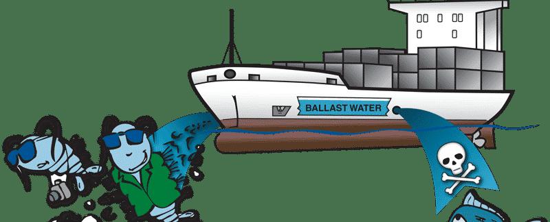 Zeichnung Seeschiff, aus dem Ballastwasser abgelassen wird. Dabei gelangen auch gefährliche Keime in die Meeresumwelt.