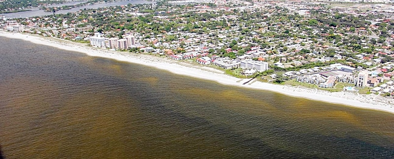 Red Tide vor Sarasota.