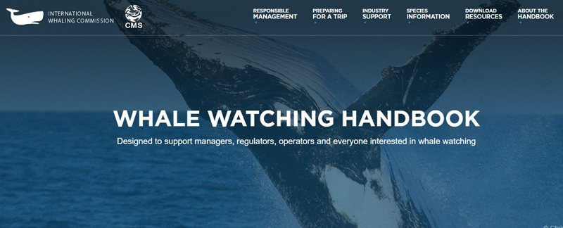 This Handbook is designed to support managers, regulators, operators and anyone interested in whale watching. It is a flexible and evolving tool incorporating international best practice, educational resources and a summary of the latest, relevant scientific information.