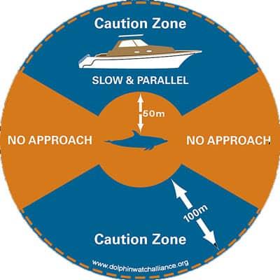 Der neue Verhaltenskodex für Boote bei Delfintouren im Roten Meer. Quelle: DWA