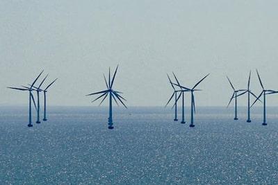 Offshore Windkraft Gefahr für die Artenvielfalt.