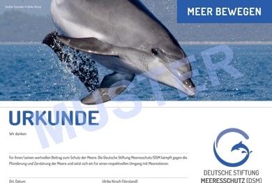 DSM-Spendenurkunde Delfin